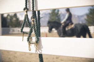 Kids&Horses_Okimoto2015-9065_toned